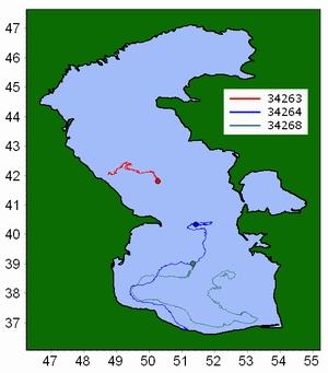 Tracks of SVP-BT drifters in Caspian Sea (July-December 2008)